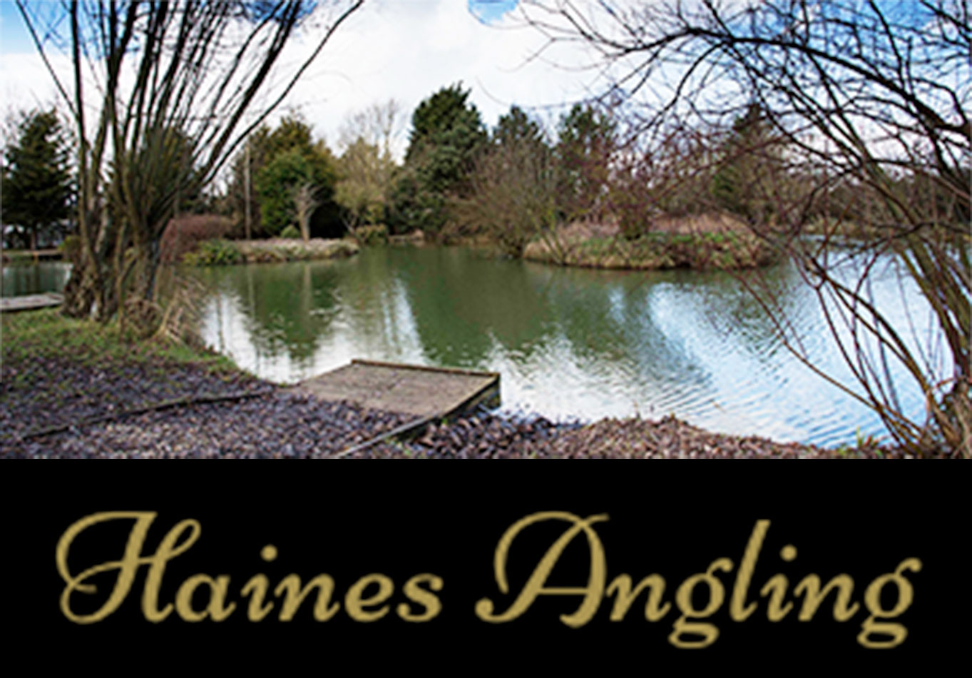 Banner linking to the Haines Angling Website